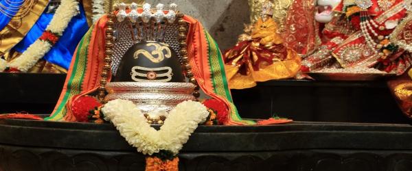 Shiva Puja / Rudra Abhishekam - Monday 6:30PM